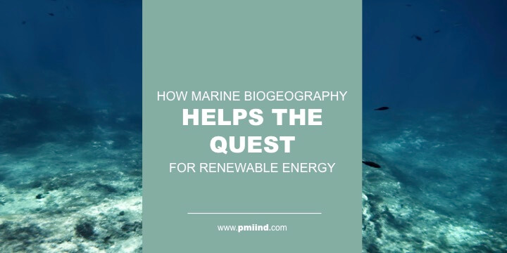 marine biogeography