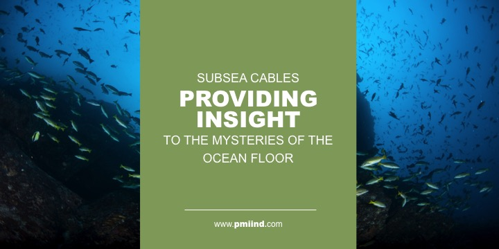 subsea cable insight